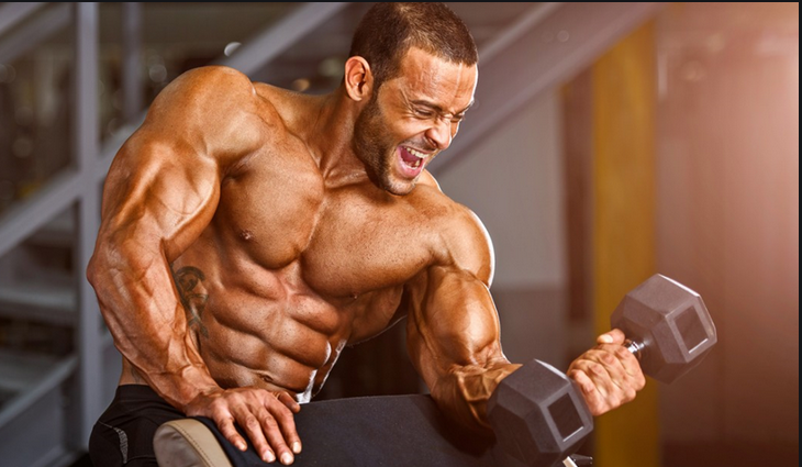 Get rid of extra weight with the Fatburner