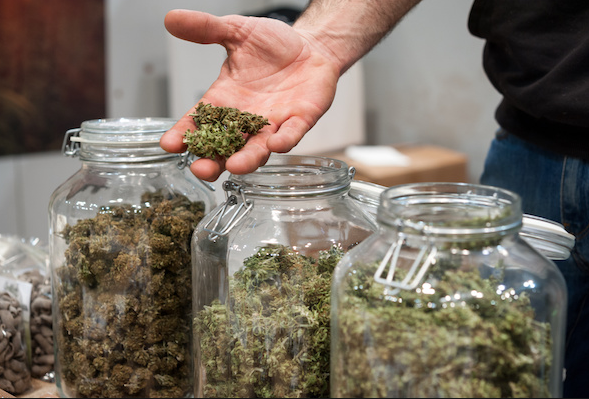 All You Need To Know About Online Dispensary Canada